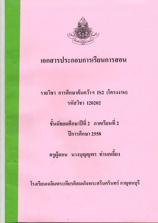 Pun011